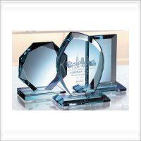 trophée personnalisé award fsp 01